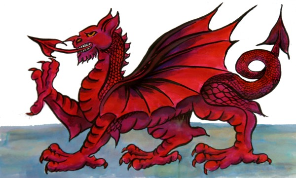 Welsh Dragon - Ink by Georgina Lester